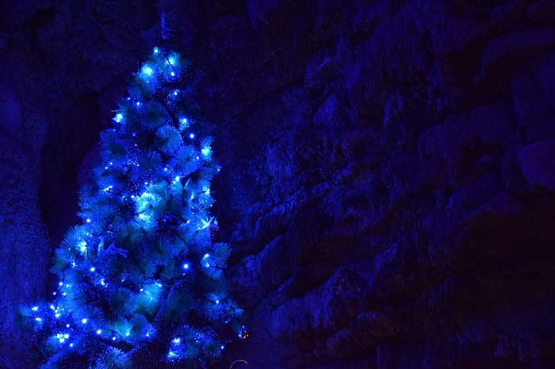 Imagen Fotos de Navidad Árbol