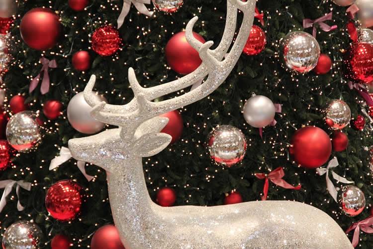 Imágenes Navidad Decoración Gratis