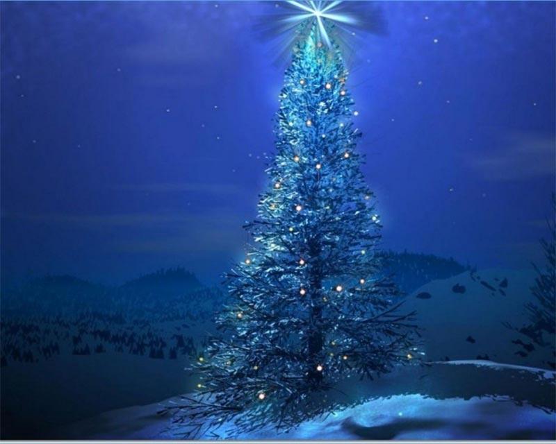 Imágenes Árbol de Navidad: árbol de Navidad