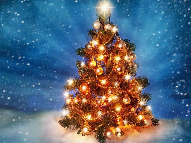 Imágenes Árbol de Navidad: Árbol de Navidad Iluminado