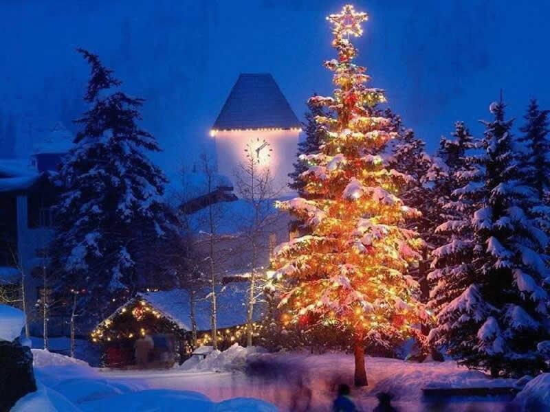 Imágenes Árbol de Navidad: Fondo Navidad