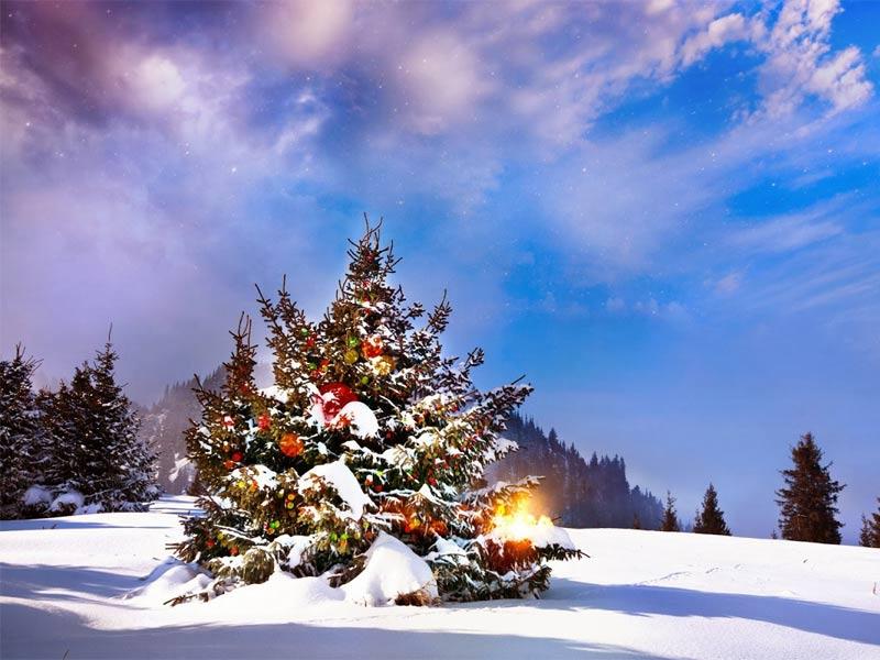 Imagen Fondos de Navidad