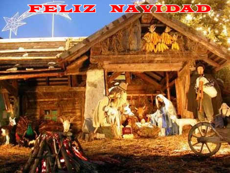 Fotos de Navidad: Fotos de Navidad Pesebre