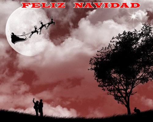 Fotos de Navidad: Fotos de Navidad Papá Noel y renos