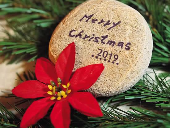 Imágenes Navidad 2019: Navidad 2019 Flor