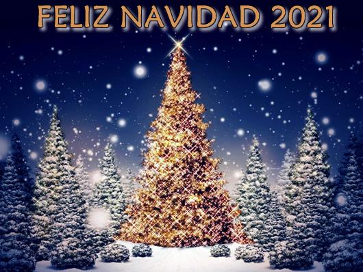 Imagen Feliz Navidad 2021