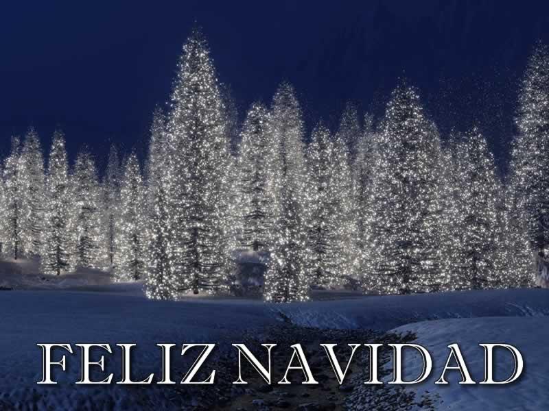 Imágenes de Navidad con frases Navideñas