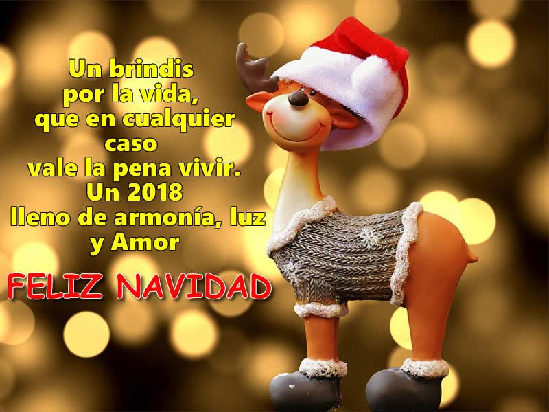 Imágenes Frases de Feliz Navidad