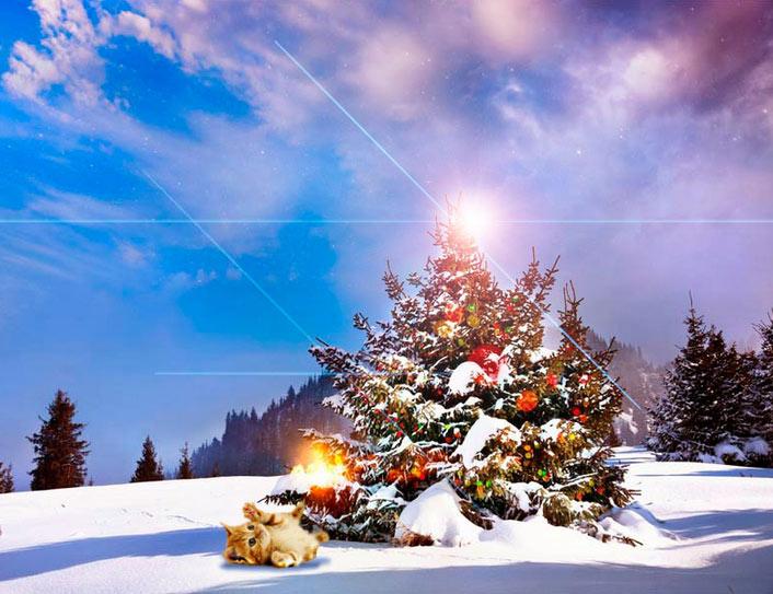 Imagen Navidad para Compartir